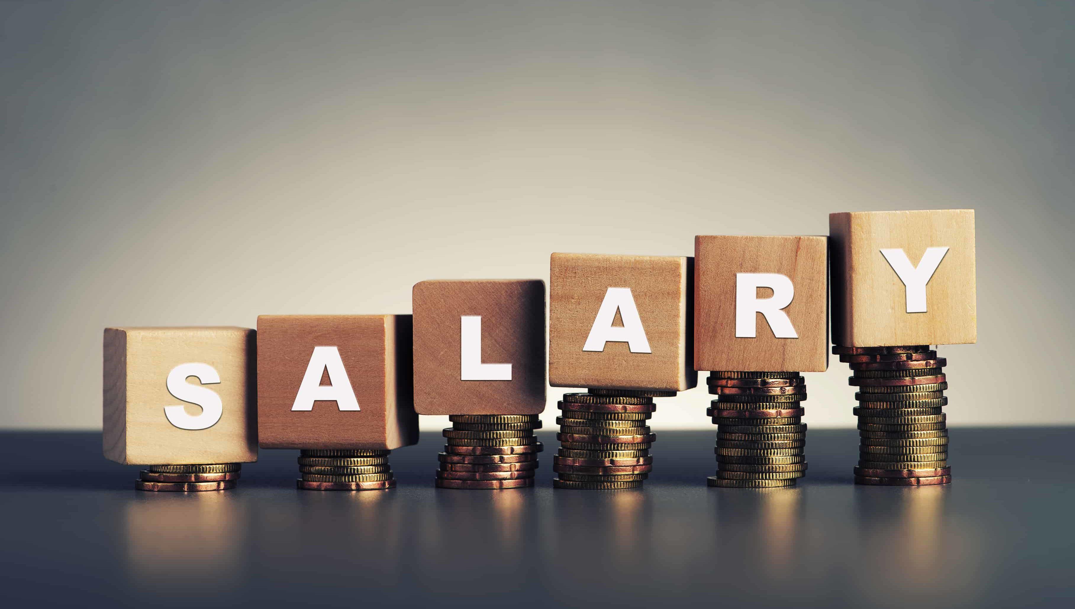2019 salary guide